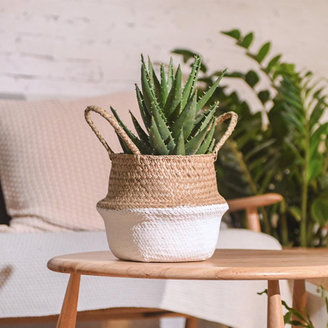 8c7cd5562131 Clearance! Seagrass Wicker Folding Plant Flower Basket Flower Pots Outdoor  Indoor for Home Garden Wall and Wedding Decoration (White)