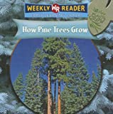 How Pine Trees Grow, Joanne Mattern, 083686333X