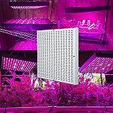 Hytekgro LED Grow Light 45W Plant Lights Red Blue