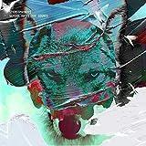 SCRΕΑΜ ΑΒΟVΕ ΤΗΕ SΟUΝDS. Deluxe CD