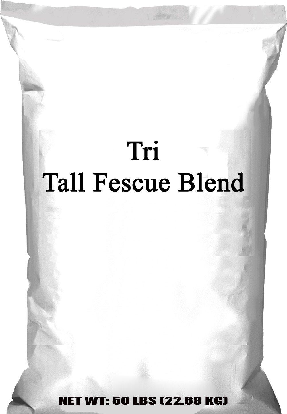 Pennington Tri Fescue Blend, 50 lb