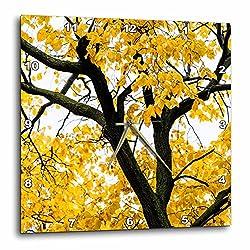 3dRose Alexis Photography - Seasons Autumn - Black linden tree body, yellow leaves, white autumn sky - 15x15 Wall Clock (dpp_267298_3)