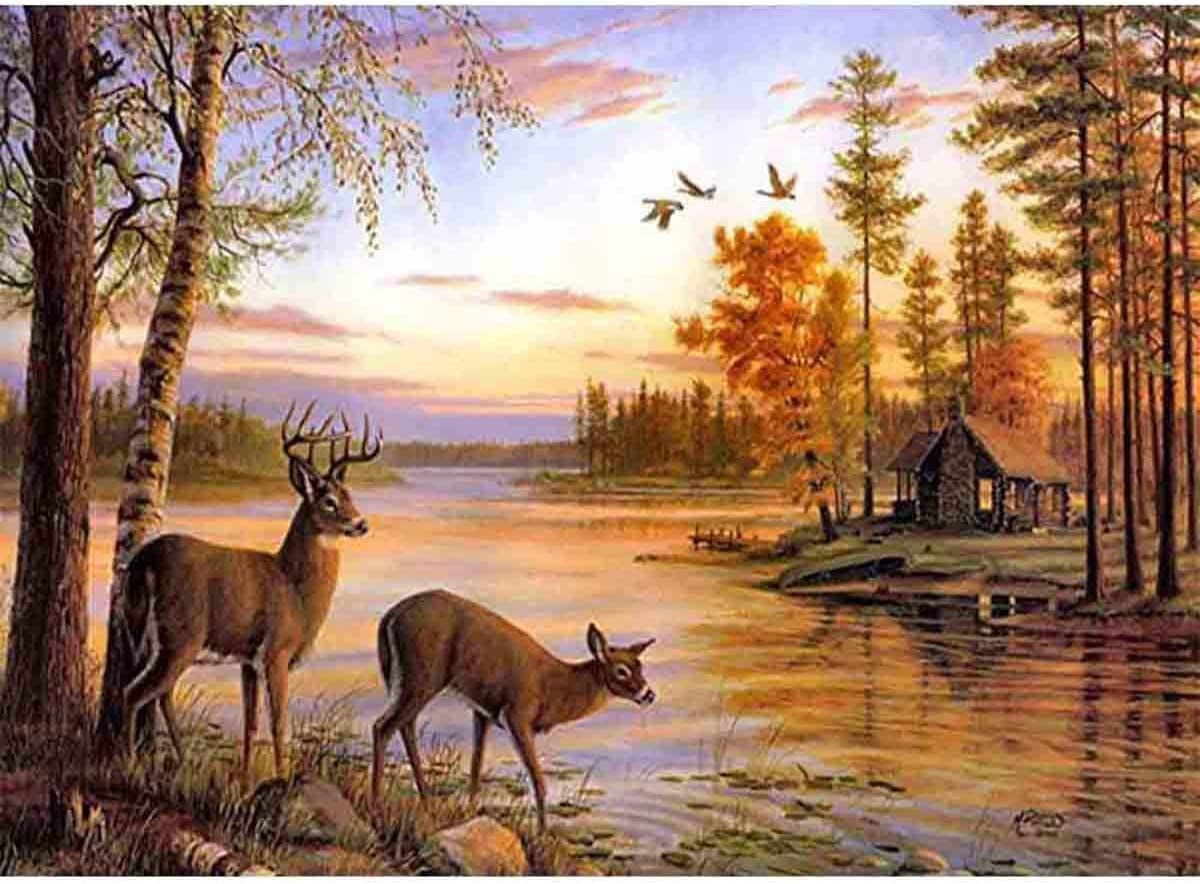 DIY 5D Deer Diamond Painting Kits, Casual Digital Painting Full Drill Combination- Indoor Wall Decoration Gifts Arts and Crafts- (Deer)