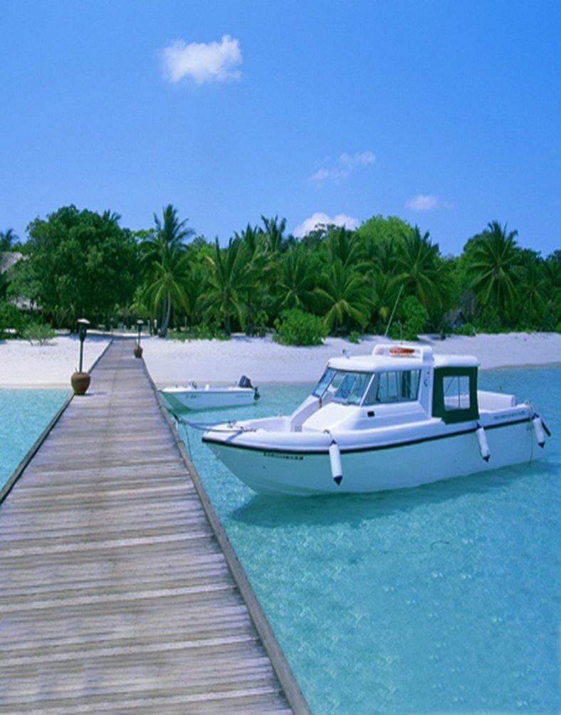 の木のボートビーチ海写真Backdrops写真小道具Studio背景5 x 7ft   B01HZWWO3G