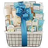 Wine Country Gift Baskets Vanilla Bean Hand-Lotion/Bath-Salts/Shower-Gel/Body-Lotion/Hand-Soap/Bar-Soap/Sponge, 1-Count