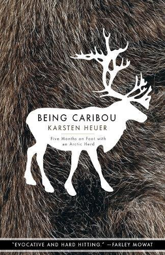 Being Caribou: Five Months on Foot with an Arctic Herd (The World As Home) (Top 5 Most Endangered Animals In The World)