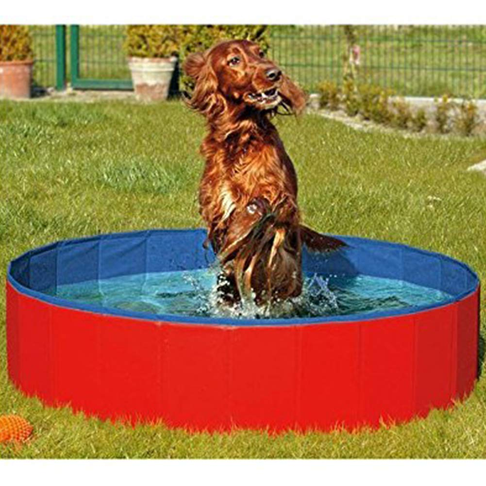 BeesClover Eco-Friendly Thicken Folding Bathtub Pool Toy for Pet Dogs red 12030CM by BeesClover