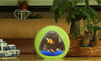 Mini Desktop Fish Tank Aquarium Aquarium Small Aquarium Acrílico Creative Aquarium Aquarium,Green: Amazon.es: Hogar