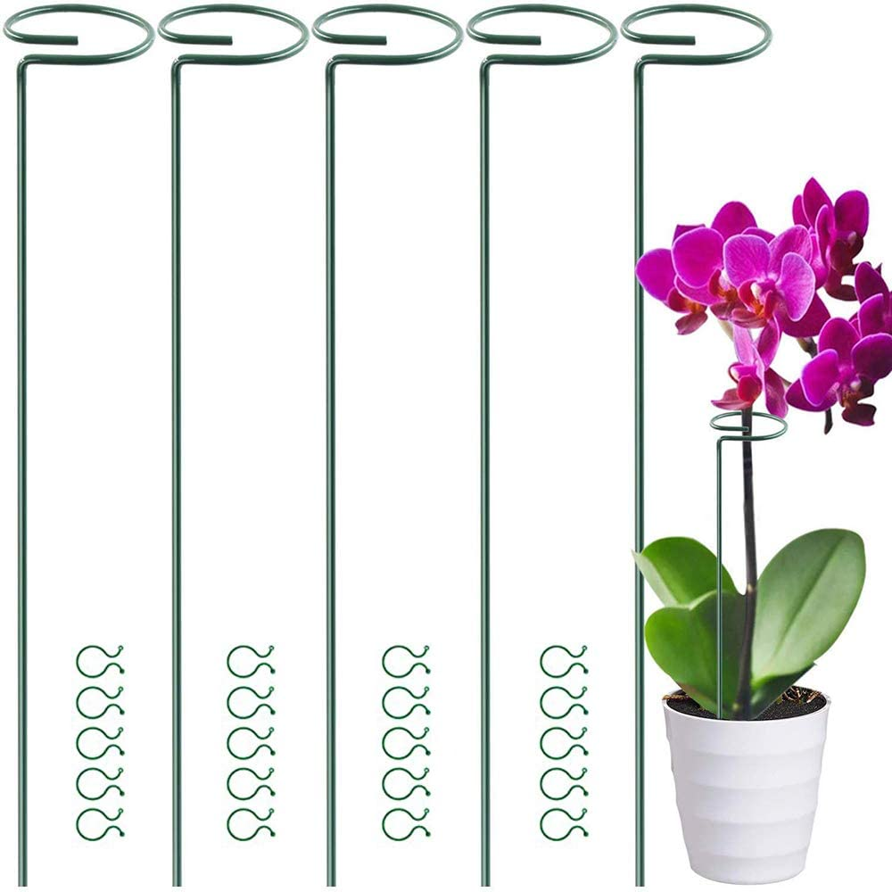 5 Pack 15.9 INCH Plant Support Stakes for Flowers,Garden Single Stem Plant Support for Amaryllis Orchid Lily Rose Tomatoes Peony Rose Flower Stem with 20 pcs Plant Clips, 40 cm Long