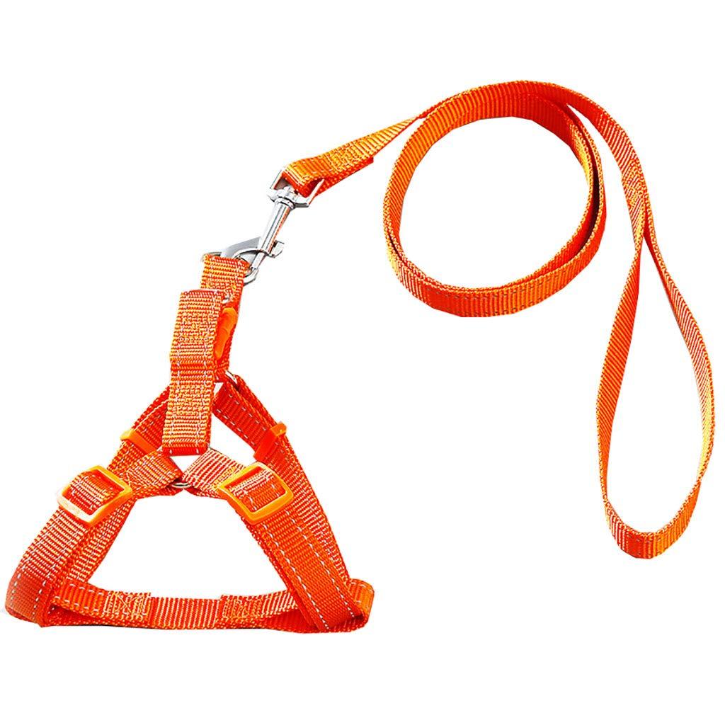 Medium Reflective Dog Leash Rope Chest Strap Dog Leash Small and Medium Dog Chain Nylon Rope