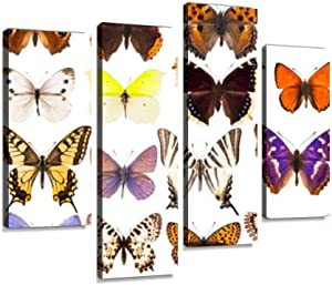 IGOONE 4 Panels Canvas Paintings - Set of Sixteen Various Vibrant European Butterflies Exotic Bird - Wall Art Modern Posters Framed Ready to Hang for Home Wall Decor