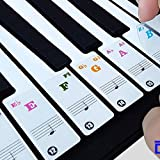 TERSELY Piano Keyboard Stickers for 88/61/49/37 Key.Large Bold Letter Piano Stickers Perfect for Kids Learning Piano.Multi-Color,Transparent,Removable