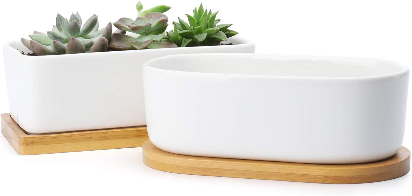 Greenaholics Succulent Plant Pots - 6 Inch Rectangular Ceramic Planters, Small Cactus Container, Bonsai Pots, Flower Pots with Drainage Hole, Bamboo Tray, Set of 2, White