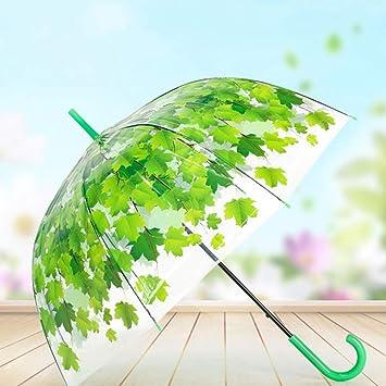 RAIDNY Paraguas Transparente Mujer Lluvia Paraguas Mujeres Niños ...