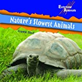 Nature's Slowest Animals, Frankie Stout, 1404241604