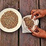Caffe-Santacruz-Cremoso-Pack-da-100-Capsule-Compatibile-con-le-macchine-Dolce-Gusto-ad-uso-domestico