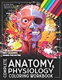 Complete Anatomy And Physiology Coloring