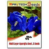 MPRO-TECH Multi Layer Big Size Clitoria Ternatea Aparajita Nilkantho Flower Seeds
