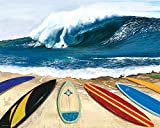Scott Westmoreland Wait Your Turn Surf Boards Surfing - Best Reviews Guide