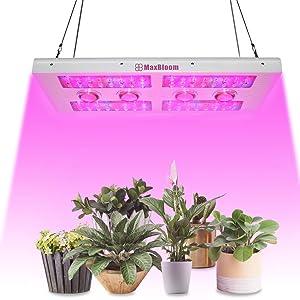 Maxbloom 800w X8 Professional Cob LED Grow Light