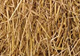 4 Pounds 100 Percent Natural Wheat Straw (4 lbs.)