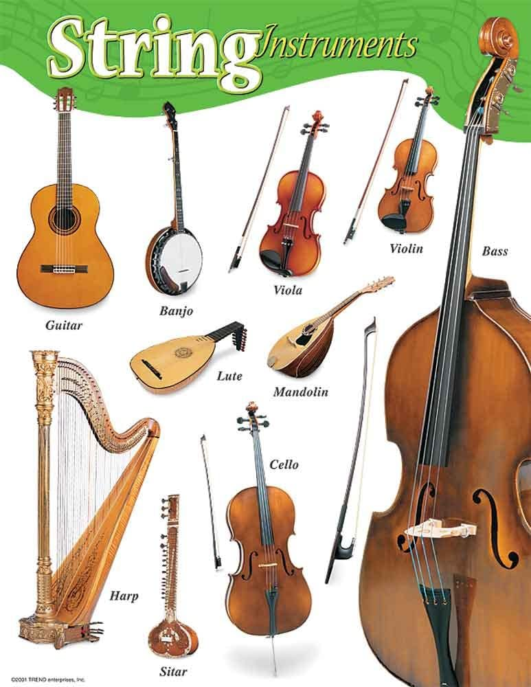 Amazon.com: Music Treasures Co. String Instruments Poster Pack of ...