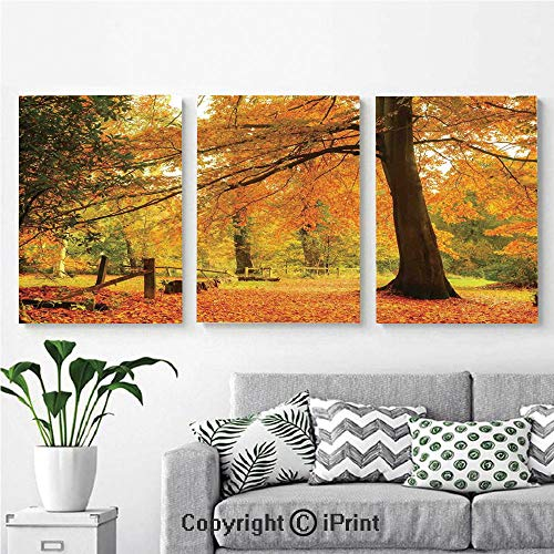 Canvas Prints Modern Art Framed Wall Mural Autumn Fall Forest Scene with Vibrant Colors and Pale Leaves Tranquil Peace Nature for Home Decor 3 Panels,Wall Decorations for Living Room Bedroom Dining