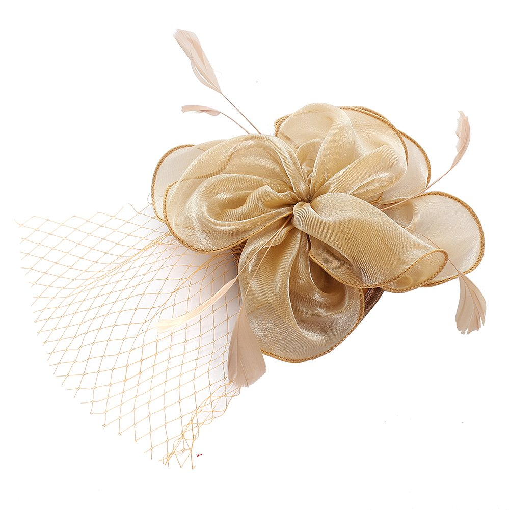 Women Feather Mesh Net Fascinator Hat with Hair Clip Wedding Cocktail Tea Party Derby Headband Ladies Day Race Royal Ascot (C Serials) (C5)