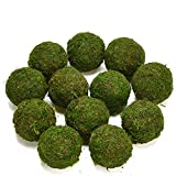 Byher Decorative Ball Natural Green Moss Handmade (3.5''-Set of 6)