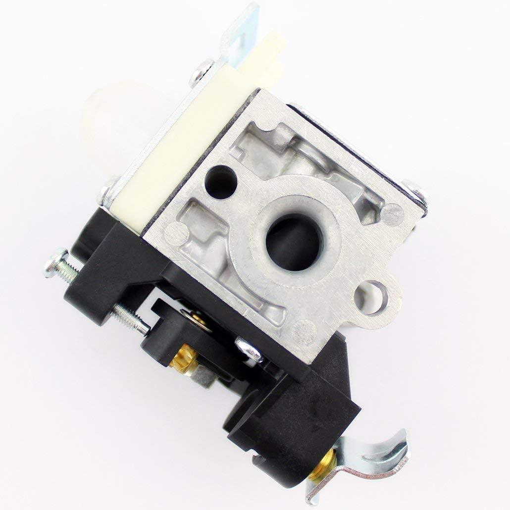QAZAKY Carburateur Carb pour Zama Rb-k106/Echo Pb-250/Pb-250ln Es-250/A021003660/Carburateur