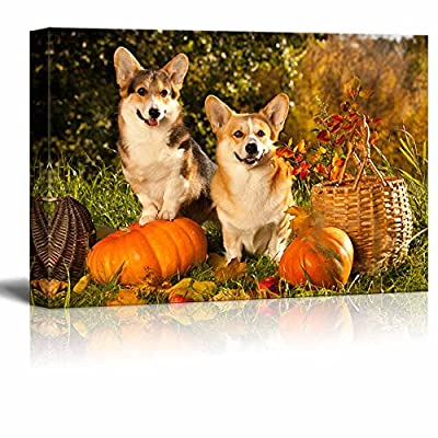 Majestic Style, Welsh Corgi Pembroke Dog, Crafted to Perfection