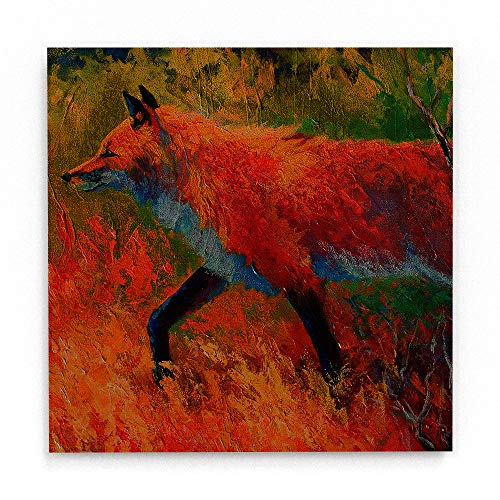 Trademark Fine Art Red Fox 1 by Marion Rose, White Metal Art 16x16, Multi-Color