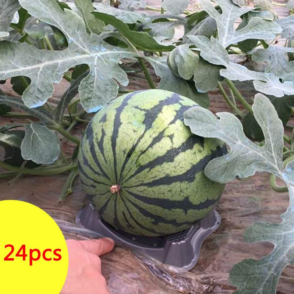 Yozhanhua Soporte de plástico para plantas de melón, 24 unidades ...