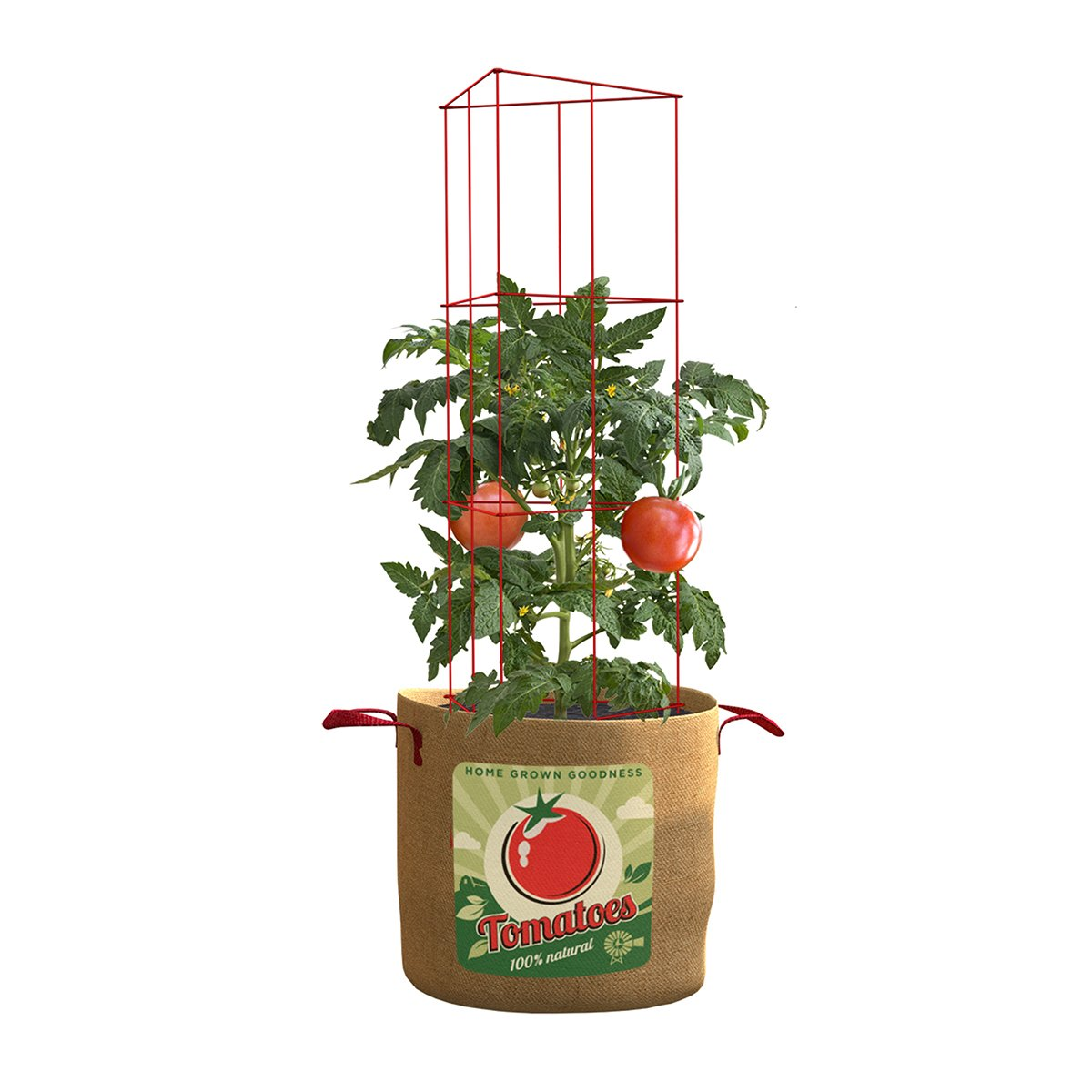Panacea Products Tomatoes 20 gallon Grow Bag Folding 42'' Cage