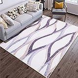 Floor mats bedroom floor mats, Bay window mat rectangular pattern floor rug-A 63x91inch(160x230cm)