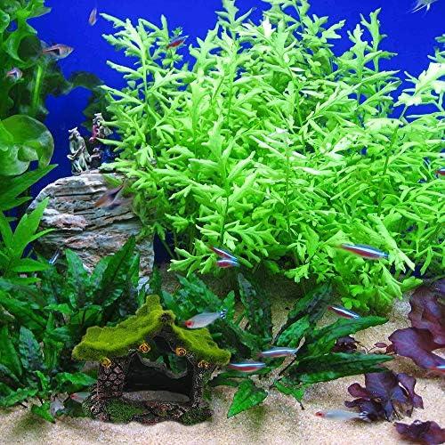 Decoración de troncos de acuario para casas de peces 6