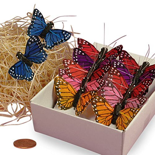 Assorted Monarch Butterflies, 1-1/2