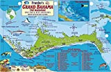 Grand Bahama Island Dive Map & Reef Creatures Guide Franko Maps Laminated Fish Card
