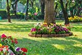 Easy Gardening Roll Out Flowers Tree Ring kit - ETR3000-3 Pack - by Garden Innovations