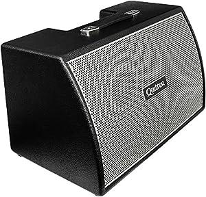 Amazon.com: Quilter Labs Bassliner 2x10w 500W 2x10 Bass Speaker ...