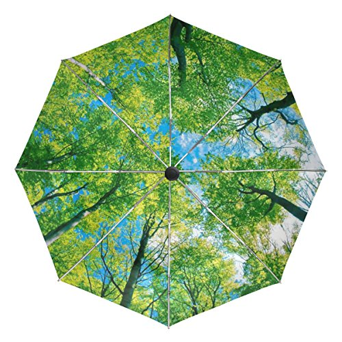 BAIHUISHOP Blue Forest Sky Sunlight Windproof Umbrellas Auto Open Close 3 Folding Golf Strong Durable Compact Travel Umbrella Uv Protection Portable Lightweight Easy Carrying and Slip-Proof Handle