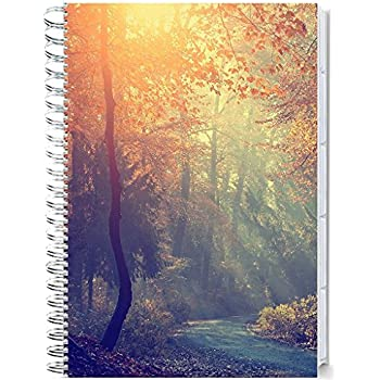 Tools4Wisdom Planner 2018 - 14-Months November 2017-2018 December Calendar Year - Daily Weekly Monthly Yearly Day Planner (Spiral Softcover, Tabs, 8.5 x 11)
