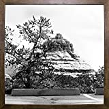 View From The Chapel B/W-HARLAN78296 Print 19''x19'' by Harold Silverman - Landscapes in a Cafe Mocha