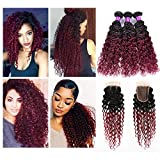 Shengqi Hair 8A Brazilian Virgin Hair with Closure Brazilian Kinky Curl Hair Weave Bundles Ombre 3 Bundles Natural Black to Burgundy Color Human Hair Weave with Lace Closure 10 12 14 +10 Review