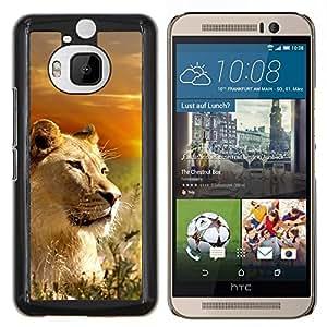 YiPhone /// Prima de resorte delgada de la cubierta del caso de Shell Armor - León Naturaleza Savannah África Sunset Sun - HTC One M9Plus M9+ M9 Plus