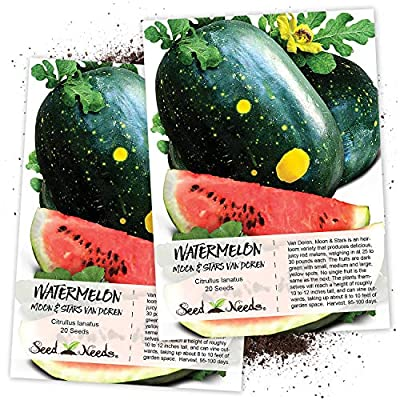 Seed Needs, Van Doren Moon & Stars Watermelon (Citrullus lanatus) Twin Pack of 20 Seeds Each Non-GMO : Watermelon Plants : Garden & Outdoor