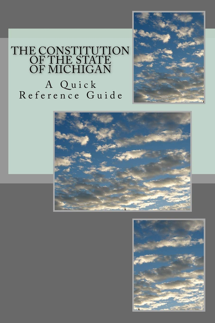 The Constitution of the State of Michigan: A Quick Reference Guide:  Amazon.es: Timothy Ball: Libros en idiomas extranjeros