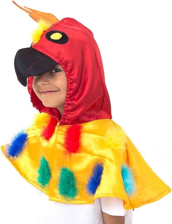 Lucy Locket - Disfraz de loro para niños (3 a 8 años): Amazon.es ...