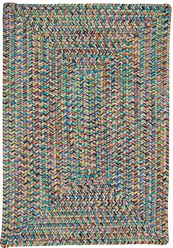 Colonial Mills Braided Runner Area Rug 2'x10' Bright Kicks Cove (rect) Collection