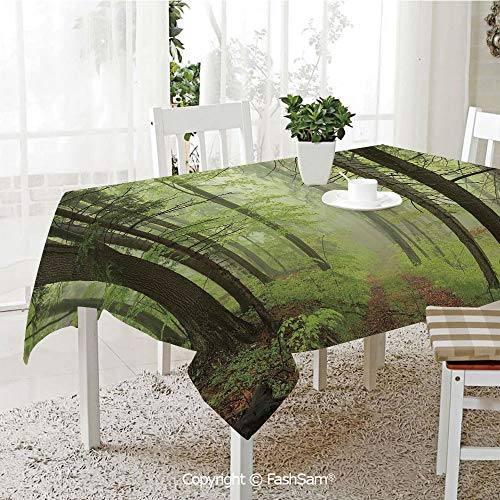 Alder Vanity - AmaUncle Party Decorations Tablecloth Trail Trough Foggy Alders Beeches Oaks Coniferous Grove Hiking Theme Resistant Table Toppers (W60 xL84)